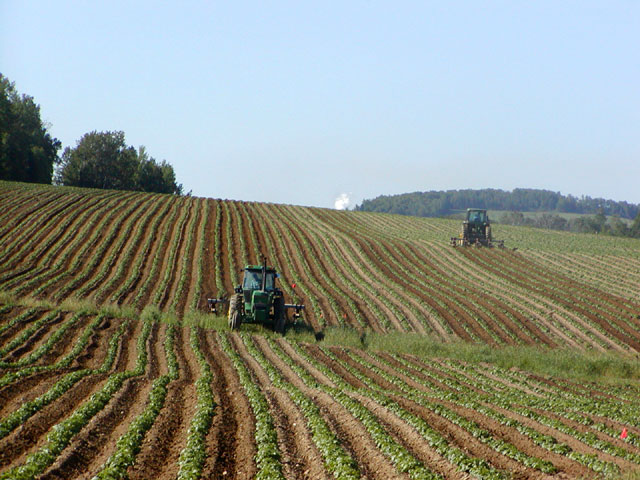 Tractors_in_Potato_Field