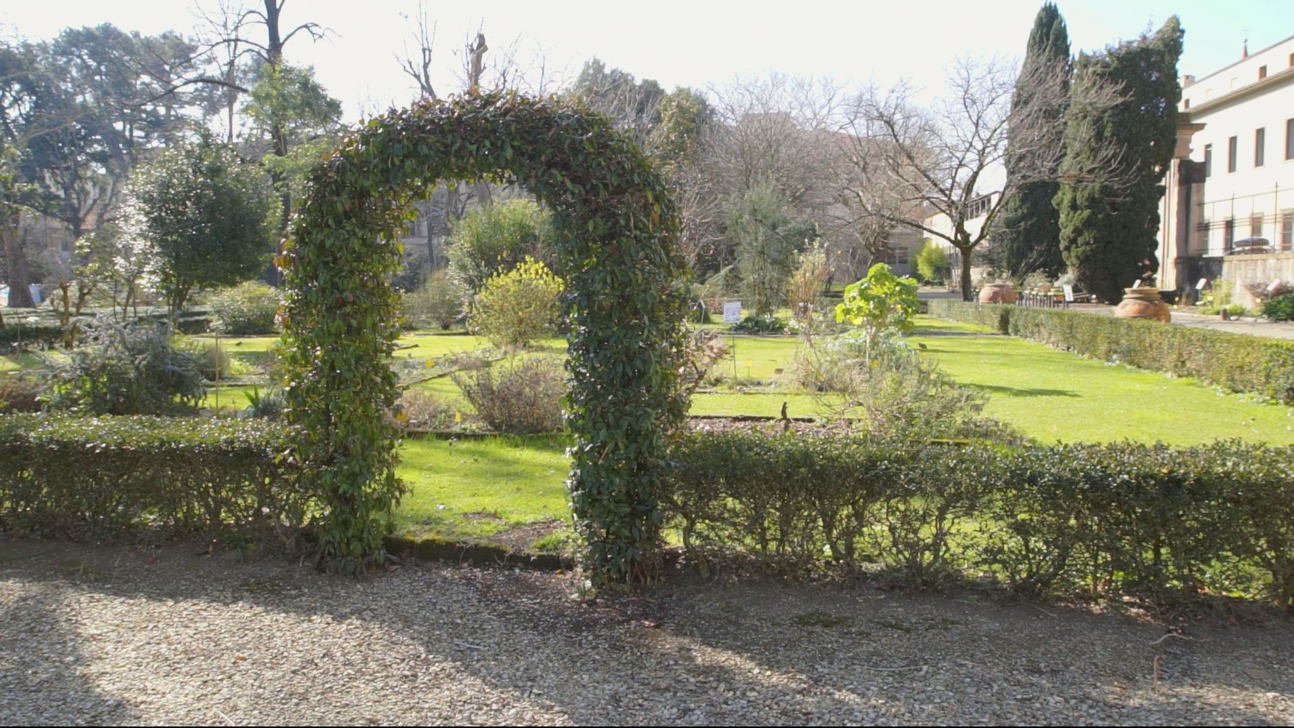 Giardino dell iris l orto botanico dedicato al fiore simbolo di
